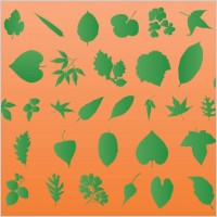 Link toLeaf vector silhouettes