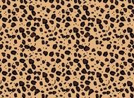 Leopard pattern vector free