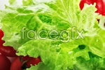 Link toLettuce, close-up psd