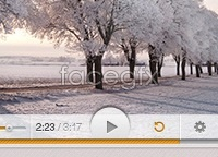 Link toLight video player psd