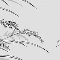 Link toLine drawing of flowers -23