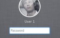 Link toLion login window psd