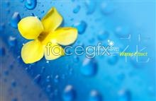 Link toLittle yellow droplets flower background psd
