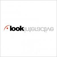 Link toLook interactive logo