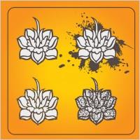 Link toLotus flowers