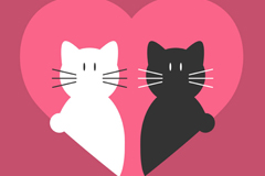 Link toLove heart black and white cat vector