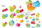 Link toLovely fruit and vegetables stickers vector