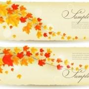 Link toMaple leaf banners vector set 06