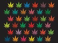 Link toMarijuana background graphics vector free