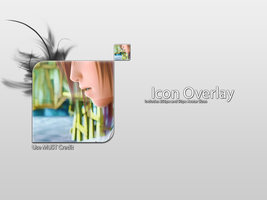 Link toMatte icon overlay