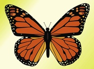Link toMonarch butterfly vector free