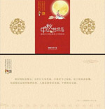 Moon festival greeting cards vector