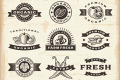 Link toNatural food tag vector