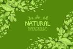 Link toNatural green leaf background vector