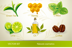 Natural herbal cosmetics icon vector