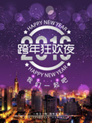 Link toNew year's carnival night poster vector