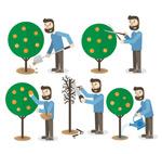 Link toNursing care of fruit trees gardener vector