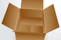 Link toOpen carton vector