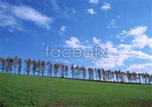Link toOpen sky 293