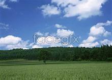 Link toOpen sky 391