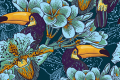 Link toOrchids and toucan background vector