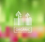 Organic food bar vector