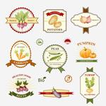 Link toOrganic vegetable labels vector