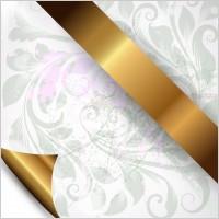 Link toOrnate patterns 03 vector