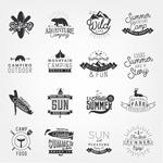 Link toOutdoor sports icons vector
