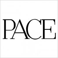 Link toPace 2 logo