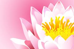 Link toPainted lotus design vector