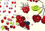 Painting fruit illustration vector