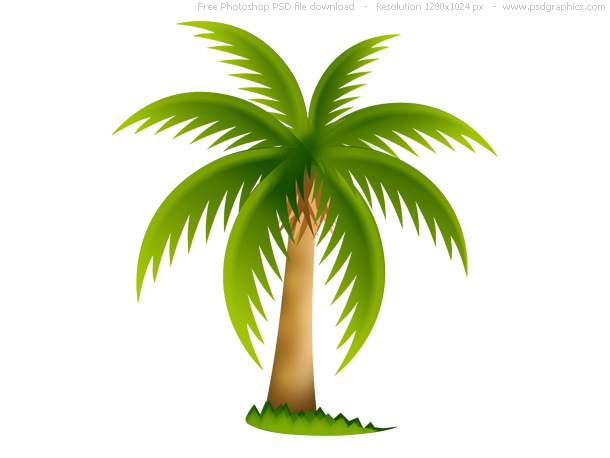 palm tree – Over millions vectors, stock photos, hd pictures, psd