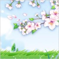 Link toPeach blossom