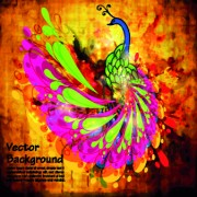 Peacock backgrounds 01 vector