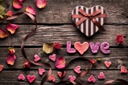 Link toPetals of love hd picture download