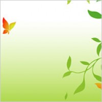 Link toPictures of green branches and butterfly