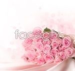 Link toPink rose 01 psd