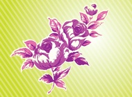 Link toPink rose vector free