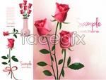 Link toPink rose vectors
