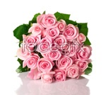 Link toPink roses 03 psd