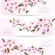 Link toPink sakura banner vector free