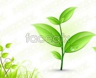 Link toPlant spring vector vine plant pattern