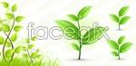 Link toPlant spring vector