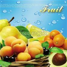 Link to1 fruit Psd