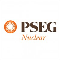 Link toPseg nuclear logo