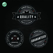Link toQuality and guaranteed black label design elements 02 vector