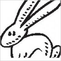 Link toRabbit 11