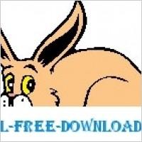 Link toRabbit 16