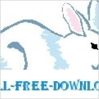 Link toRabbit 19